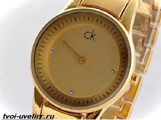 Часы-Calvin-Klein-Особенности-цена-и-отзывы-о-часах-Calvin-Klein-7