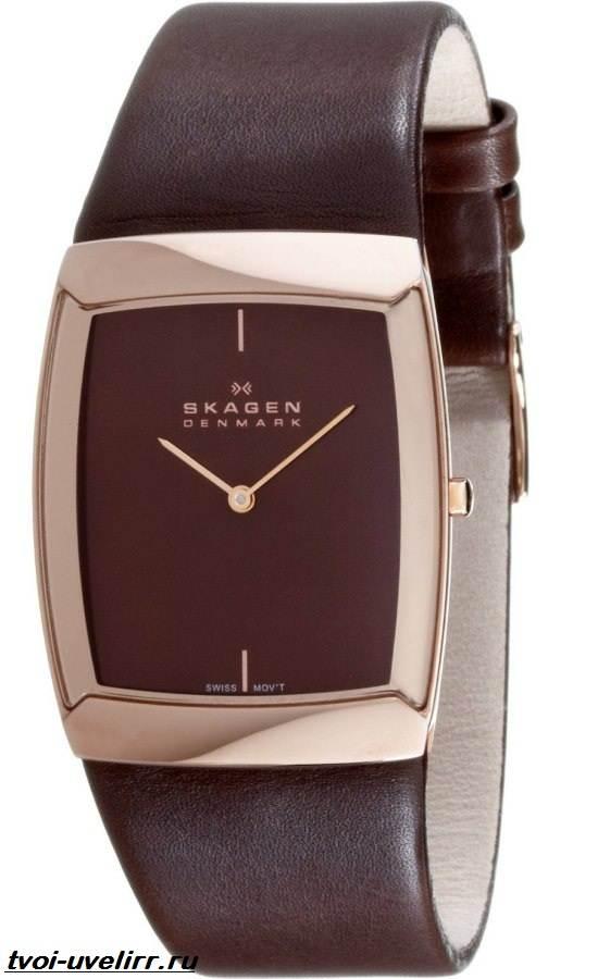 Часы-Skagen-Описание-особенности-отзывы-и-цена-часов-Skagen-1