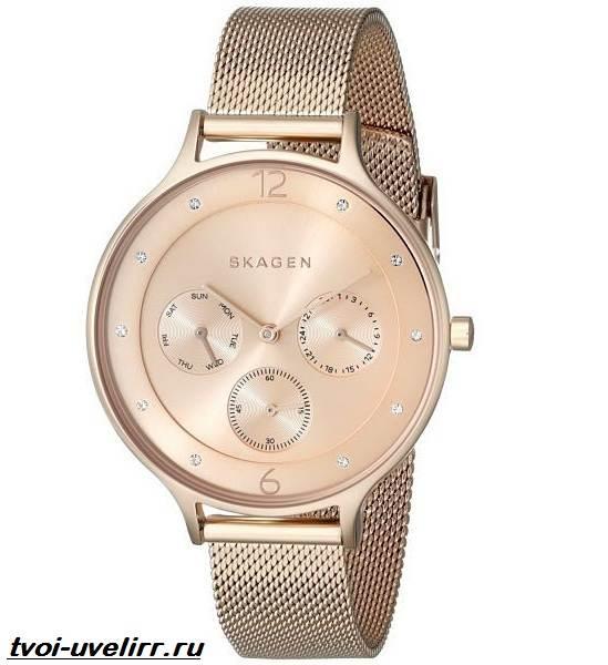 Часы-Skagen-Описание-особенности-отзывы-и-цена-часов-Skagen-10