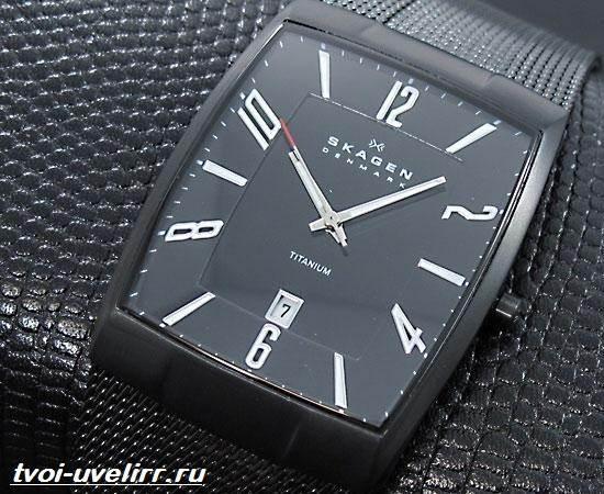 Часы-Skagen-Описание-особенности-отзывы-и-цена-часов-Skagen-5
