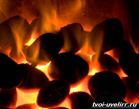 Бурый-уголь-Свойства-добыча-и-применение-бурого-угля-7