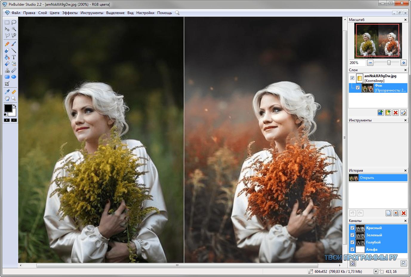 программы для профессиональной обработки фото