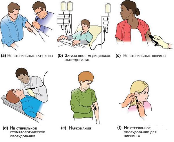 ГепатитБ как передается вирус и какие существуют методы профилактики гепатитаВ