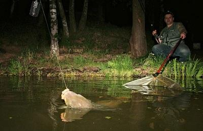 Рыбалка ночная