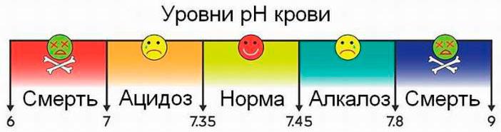 Ph плазмы крови в норме составляет