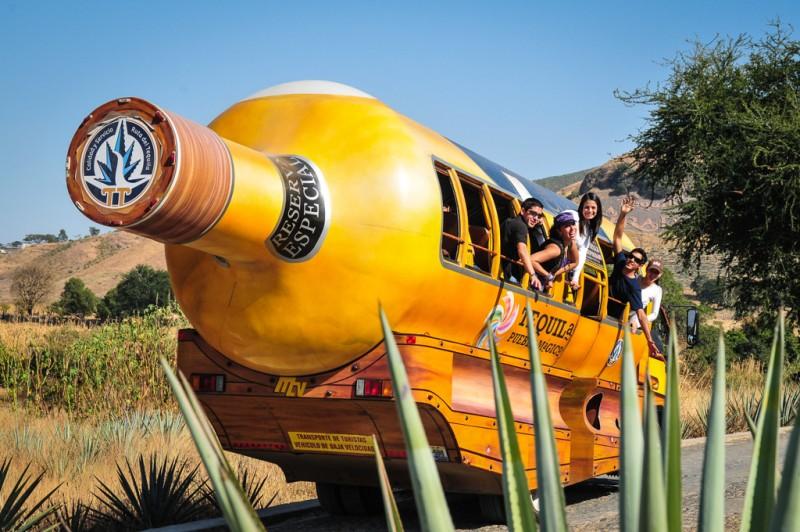 Con cuatro proyectos llevan turismo a Tequila  Nacional