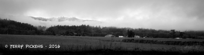 Farmland on the 101