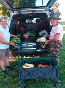 gardener's produce