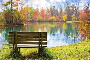 park bench by a river in fall