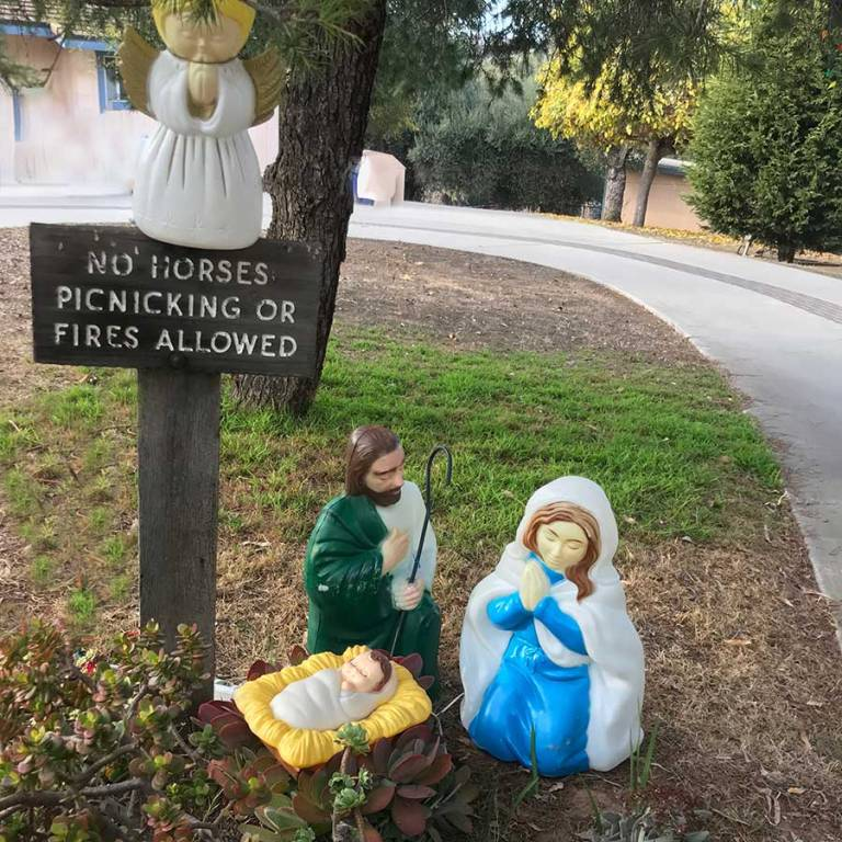 front lawn nativity