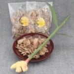 谷中生姜のジンジャーチップ