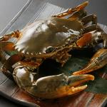 どうまん蟹(トゲノコギリガザミ・江カニ)