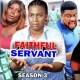 Faithful Servant Season 3 & 4 [Nollywood Movie]