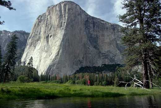 National Geographic S Free Solo Wins Oscar Doco Tv Tonight