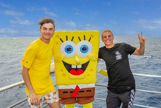 Spongebob Squarepants helps kids to conserve the Reef