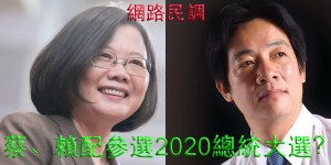 蔡、賴配參選2020總統大選,您支持嗎?