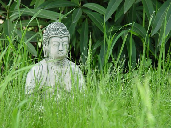 buddha-on-grass