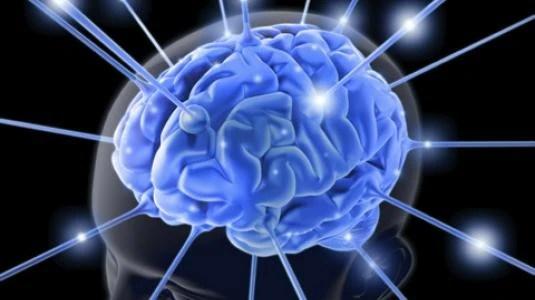 ραντεβού με τον εγκέφαλο ερπετών ακρίβεια των χρονολογίων υπερήχων στις 6 εβδομάδες