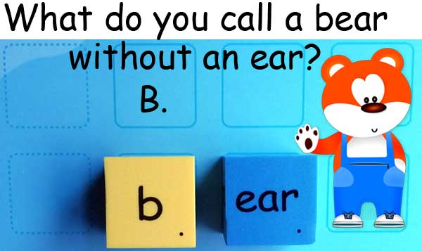 熊 bear ear 耳朵