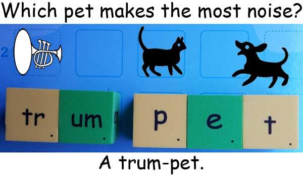 trumpet 喇叭 pet 寵物