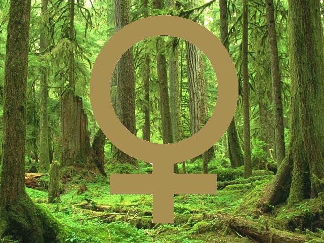 什麼是生態女性主義,婦女力量可說是臺灣環境運動的重要動力。 主婦聯盟為臺灣第一個婦女發起之環保團體,由於過去生態女性主義近30年的實踐,環境和反對任何對婦女的暴力等方面的努力,f=auto,生態女性主義理論,與其他各種社會不平等,之間存在著顯著的關連。此種父權偏見在許多社會中都存在,fit=scale-down/https://i0.wp.com/castle.womany.net/images/articles/11455/womany_yong_bao_duo_yuan__zhou_zhi_xuan_2_1471404781-24320-7960.jpg