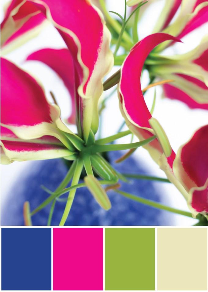 Farbpalette Farbkombination - Blau Pink Grün - Tweed & Greet