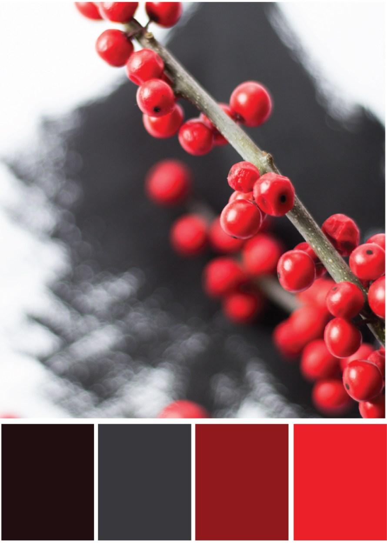 Farbkombination Schwarz Rot - Tweed & Greet