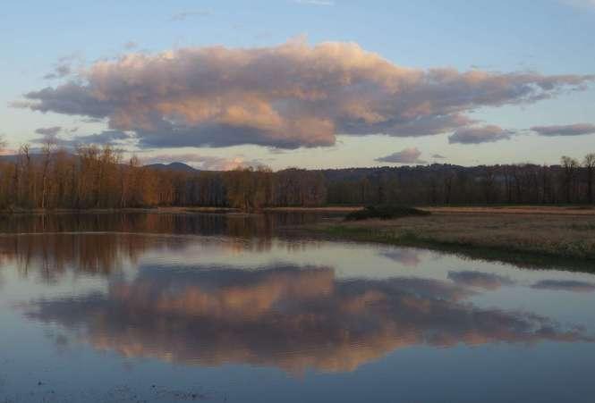 Redtail Lake