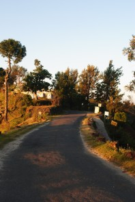 Crank's Ridge, Kasar Devi - Almora