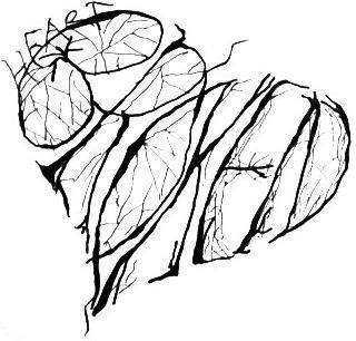 Broken-Hearted?