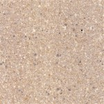 cozitex granite beige 583