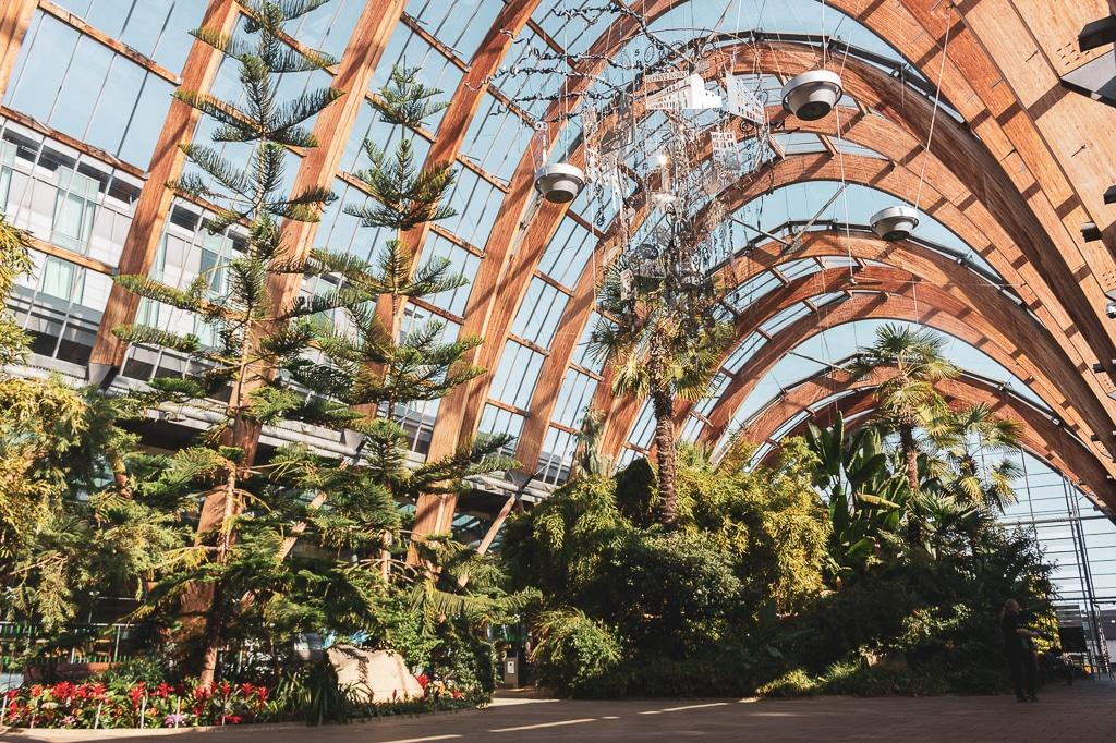 Jardin botanique de Sheffield
