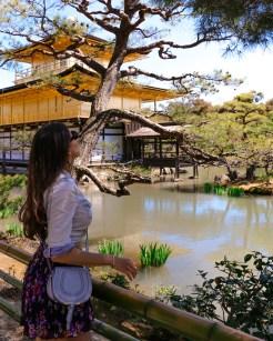 Kinkaku-ji and I