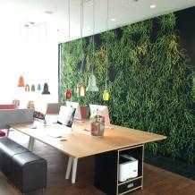 Ooh, a leafy wall