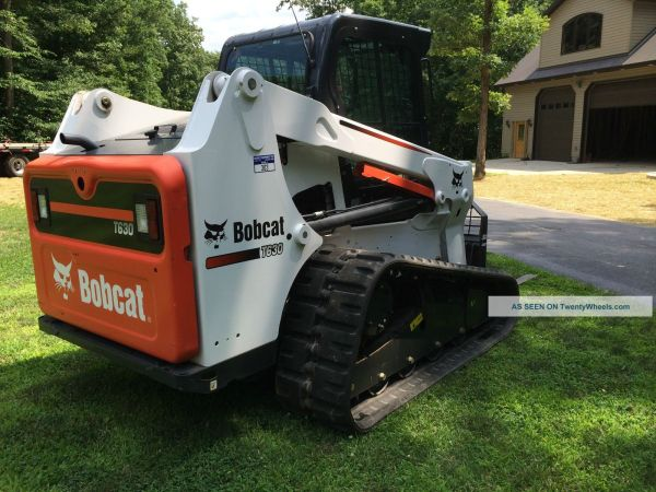 T630 Bobcat In Tucson - Year of Clean Water