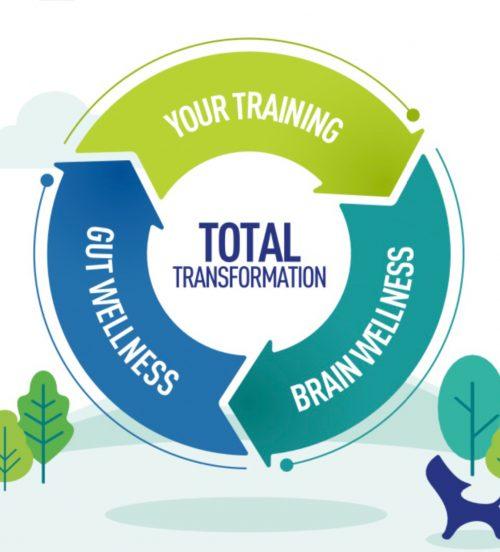 your training + brain wellness + gut wellness