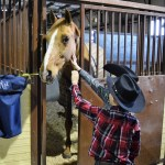 The National Western Stock Show – Explore Colorado Series
