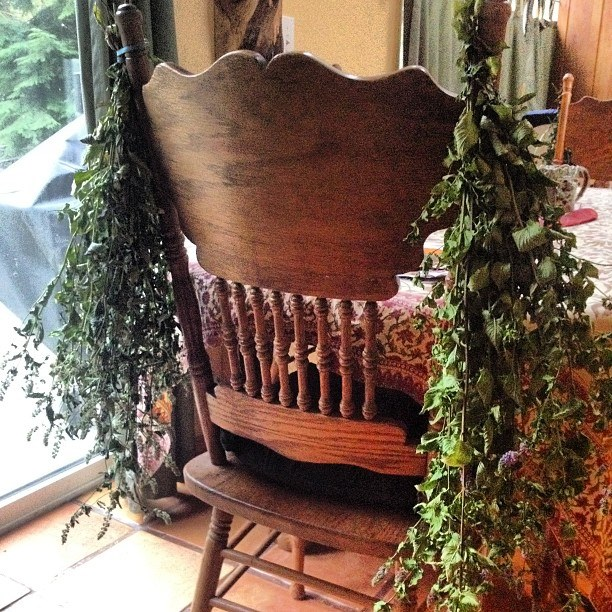 Homegrown mint bundled and drying on a chair