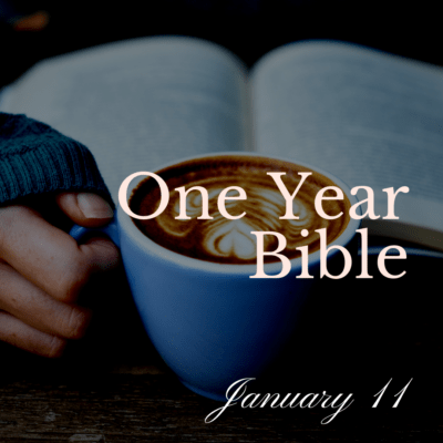 One Year Bible: January 11