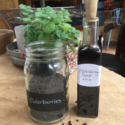 Elderberry Syrup … because fall is coming!
