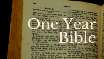 One Year Bible: May 31 – Twig and Feather