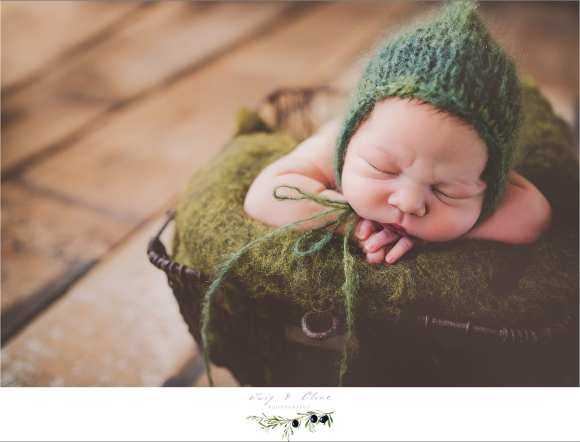 Newborn photography Sun Prairie, WI