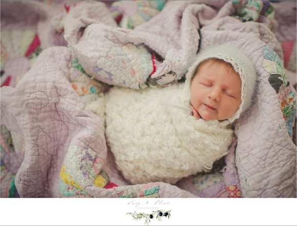 bundled, small newborns, Sun Prairie, WI