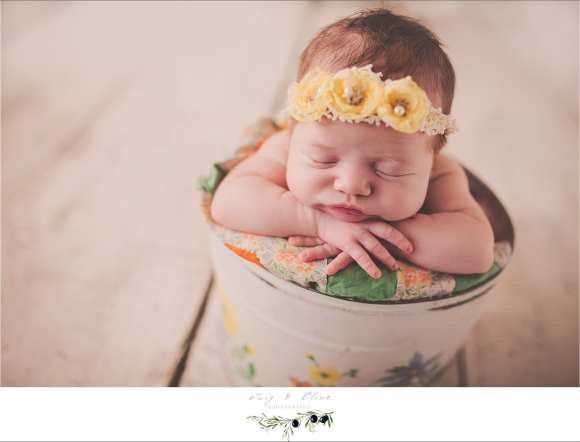 little hands, baskets, rustic, sweet angel, Madison photography newborn session