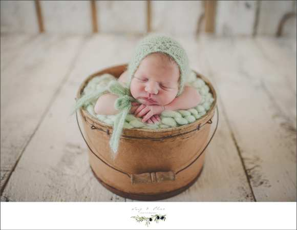 Madison area newborns, blankets, bonnets, swaddled, angelic, cherubs, baskets, rustic sessions, happy babies, Sun Prairie area photographers, TOP