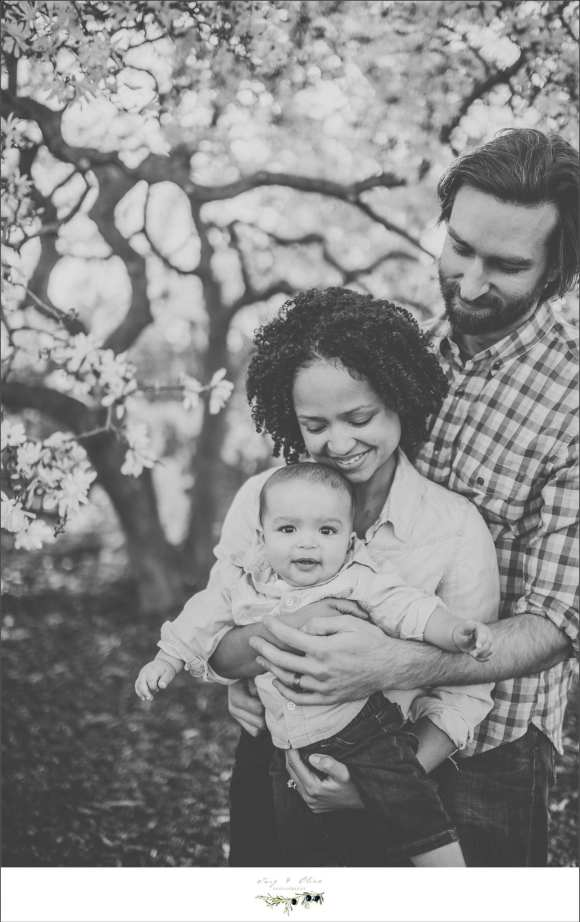 Family sessions, children sessions, children and family sessions, madison area photography sessions, cute kids, outdoor sessions, trees, blossoms, blooms, olbrich gardens, arboretum, Dane county area photography, blankets, babies, Mom's and dads, Twig and Olive children sessions