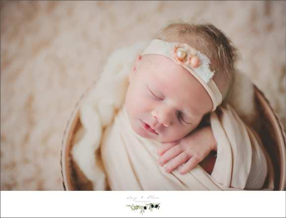hair flowers, head bands, wraps, newborns, photography, elegant, Twig and Olive