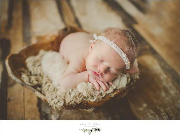 babies, newborns, Twig and Olive photography newborn sessions, head bands, rustic, woodsy, wraps, blankets, TOP