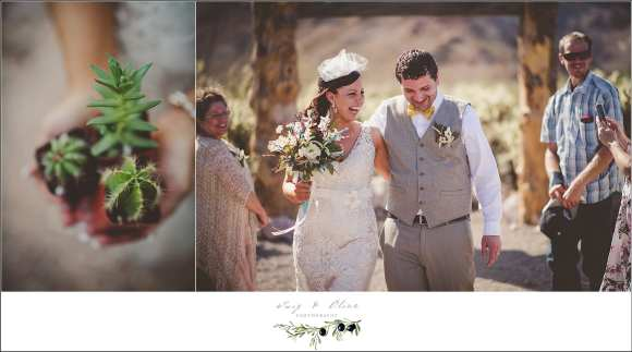 nelson nevada desert wedding