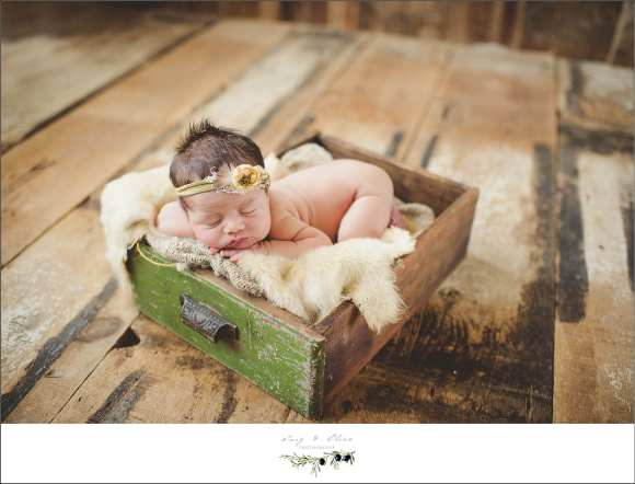 drawers, vintage, rustic, hair flower daisy, daisy, blankets, bundled, newborn sessions
